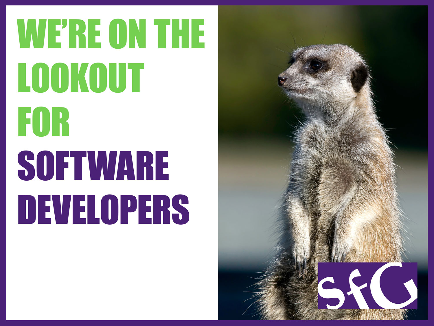 We're on the lookout for Software Developers